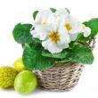 Oster- und Frühlingsfest im Haus der Begegnung
